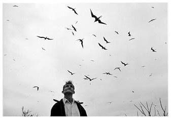 Graciela Iturbide, El señor de los pájaros